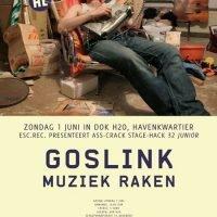 ACSH #32 (junior): Goslink + Muziek Raken